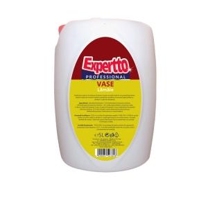 Expertto Detergent de Vase Lamaie